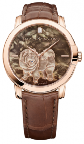 Harry Winston Midnight Dog Automatic